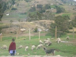 Cuenca Week 3 031