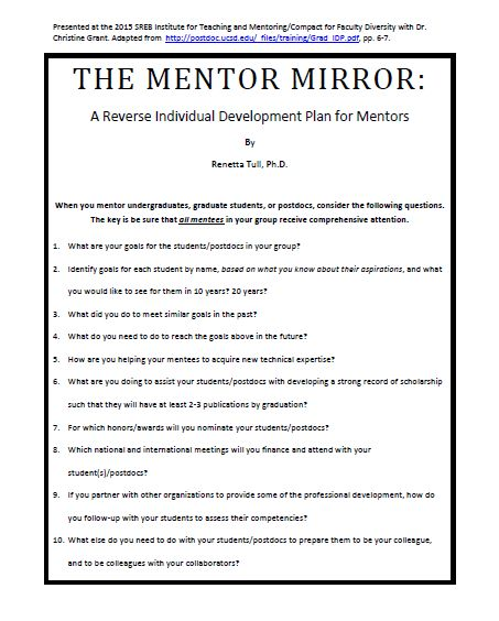 Mentor Mirror